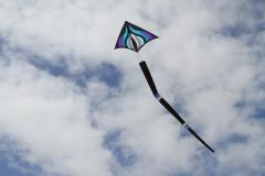Rob Brassington kites